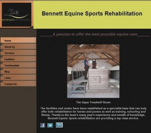 01 Home   Bennett Equine