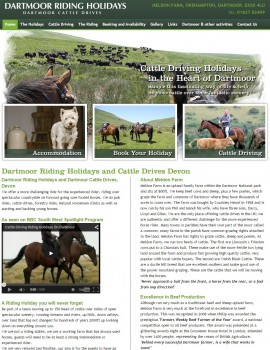 02Dartmoor Riding Holidays and Cattle Drives Devon   Dartmoor Riding Weekends and Horse Riding Holidays Devon