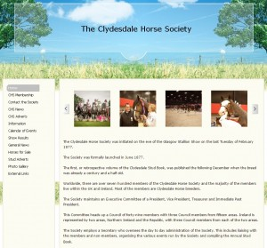 22 VThe Clydesdale Horse Society