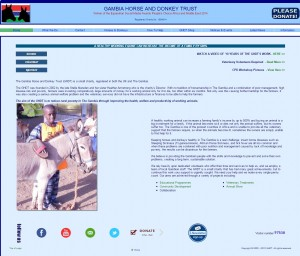 29 Gambia Horse And Donkey Trust