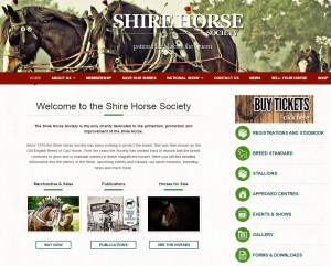 31 Home   Shire Horse