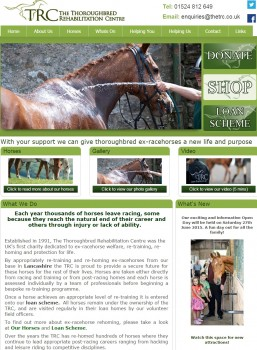 38 Ex racehorse Charity   Racehorse Retraining   Racehorses for Rehoming