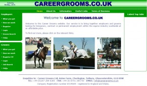 41 Career Grooms   Specialists for the Equine Industry