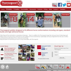 47 CThorowgood   Saddles specifically designed to fit different conformations