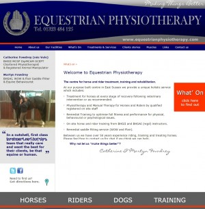 80 Home   Equestrian Physiotherapy