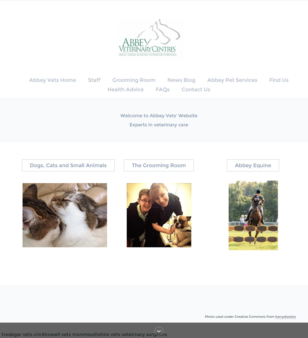 Abbey Equine Clinic Equine Kit Horse Directory Website