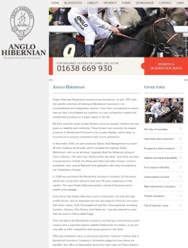 Anglo Hibernian   Bloodstock and equine insurance specialists