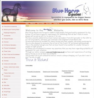Blue Horse Equine