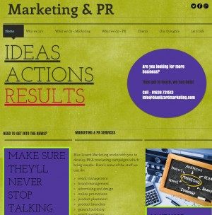 Blue Lizard Marketing Home page