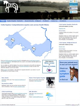 Cotts Equine  Comprehensive equine care across South Wales from Cotts Equine Hospital in Narberth  Pembrokeshire