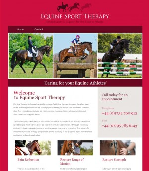 Home   Equine Sport Therapy