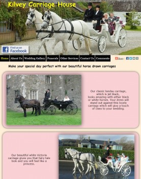Welcome to Kilvey horse and carriage hire