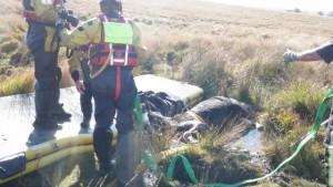 horse-bog-rescue-dartmoor-1